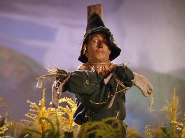 google wizard of oz scarecrow pictures